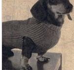 Tricoter manteaux chiens : blog manteaux chien